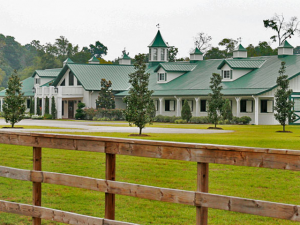 ap-home-page-feature-equestrian